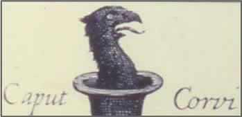 Caput Corvi